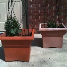 rejuvenate faded plastic pots