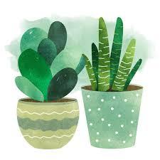 Desert Plants Cacti & Succulent Clipart Set Potted Plant Confetti Deco  INSTANT DOWNLOAD Watercolor Smear 20 .PNG Images Cactus Clip Art Art &  Collectibles leadcampus.org
