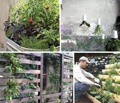 12 savvy small space urban gardening