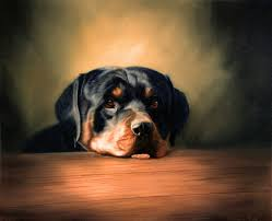 pet portrait oil painting of a dog