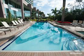 busch gardens hotel. 8 Best Hotels Near Busch Gardens Tampa Hotel L