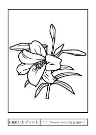 ユリ主線黒夏の花無料塗り絵イラストぬりえプリント Quilt