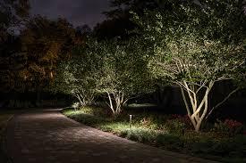 tree lighting ideas. Landscape Lighting Small Trees Tree Ideas E