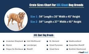 dog crates size chart heavy duty dog crate a complete buyers guide