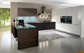kitchen modern european kitchen cabinets home design interior