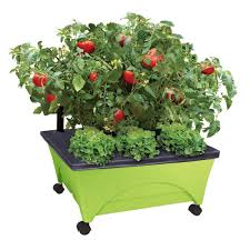 patio raised garden bed kit with watering system and casters in limey green