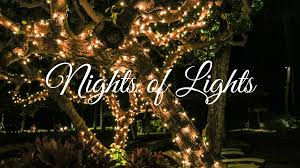 Image result for St. augustine light tour christmas