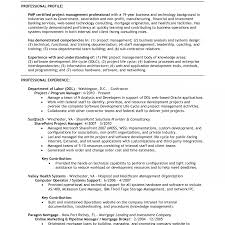 Nice As400 Resume Samples Gallery Entry Level Resume Templates