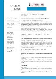 Resume Template For Experienced