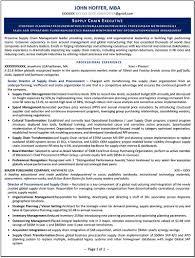 Sample Of Executive Resumes Executive Resume Samples Professional Resume Writer Ny