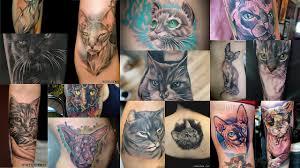 100 лучших вариантов красивые татуировки кошки на фото