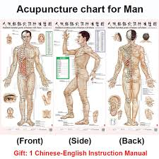 Hand Body Chart Us 7 5 25 Off Standard Meridian Acupuncture Points Chart And Zhenjiu Moxibustion Acupoint Massage Chart For Head Hand Foot Body Health Care In