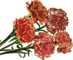 Картинки по запросу квіти ветеранам
