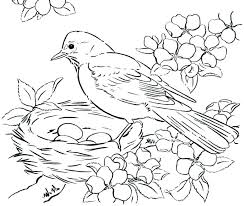 Printable Coloring Page Birds Bird Coloring Book Pages Adult