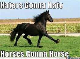 Horse MEMEs for horse lovers | HorseShipUSA via Relatably.com