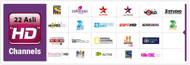 Videocon D2h Monthly Recharge Chart Videocon D2h Recharge Direct To Home Videocon Dth