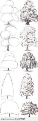 learn a better way to draw trees drawing