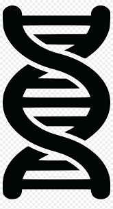 Free Clipart Of A Black And White Dna Strand Double Double Helix