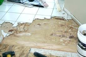 glue removal from concrete floor before removing glued carpet cement how to