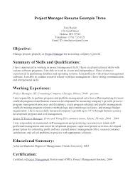 Generic Resume Objective Generic Resume Objective Writing A Generic ...