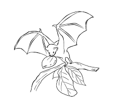 Small Picture Bat Coloring Pages Coloring Pages To Print Bats Pinterest Bats