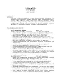 external auditor resume