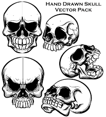 Hand Drawn Skull Free Illustrator Vector Pack Download Free Vector