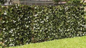 Compass Home Expandable Faux Ivy Privacy Fence With Lights Verseo Faux Ivy Greenery Yard Decoration Ivy Hedge Privacy Screen Expandable 2 Pack