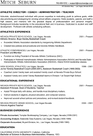 Ideal Resume Format Impressive Combination Resume Format Sample 40