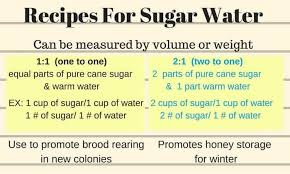 Feeding Bees Sugar Water How Why Carolina Honeybees