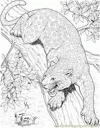 Small Picture Cheetah hunting Coloring Page Free Cheetah Coloring Pages