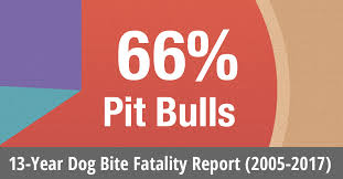 Pitbull Dog Years Chart U S Dog Bite Fatalities Breeds Of Dogs Involved Age