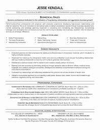 Resume Format Guide Interesting Usc Marshall Resume Template Present Usc Marshall Resume Template