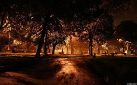 Fondos d pantalla en pinterest. Parque Nocturno Paisajes Naturaleza Fondos De Pantalla Parque Nocturno Paisajes Naturaleza Fotos Gratis