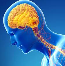 The UX of Parkinson's disease