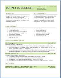 It Professional Resume Format It Professional Resume Format Sales