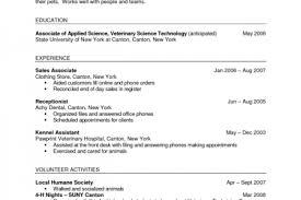 Vet Tech Job Description For Resume aaa aero inc us