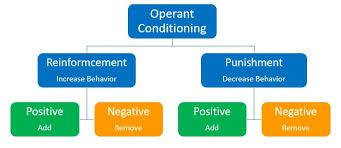 Operant Conditioning The Peak Performance Center