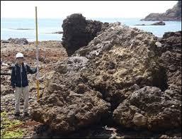 「安政東海地震」の画像検索結果