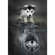 "<b>Full Square Drill 5D</b> DIY Diamond Painting ""dog to wolf"" 3D ..."