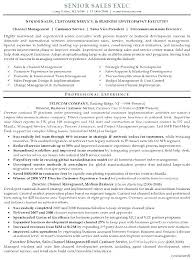 Free Modern Executive Resume Template Executive Style Resume Template Free Executive Resume Templates 2018