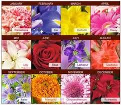 Official Birth Flower Chart Birth Month Flowers Yahoo Canada Image Search Results