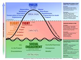 Polyvagal Theory Chart Recovery