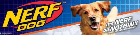 <b>Nerf</b> Dog - <b>игрушки для собак</b> | ВКонтакте