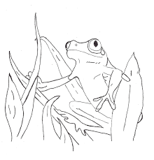 Frog Color Pages for Children | Activity Shelter | Coloring Pages ...