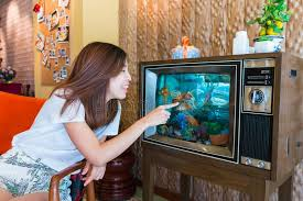 fishtank furniture. Download An Asian Girl Is Playing With The Goldfish In Tv Fish Tank Stock Image Fishtank Furniture