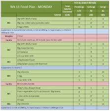 Sample Food Logs Best Photos Of Sample Food Diary Log Food Diary Log