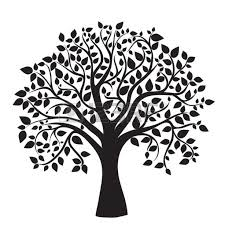 Tree Of Life Images Stock Pictures Royalty Free Tree Of Life