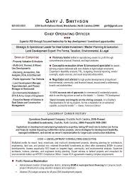 Executive Level Resume Samples Awesome Executive Resume Samples From Top US AwardWinning Executive Resume