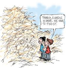 a needle in a haystack how to make your resume standout cfosgo how to make your resume standout